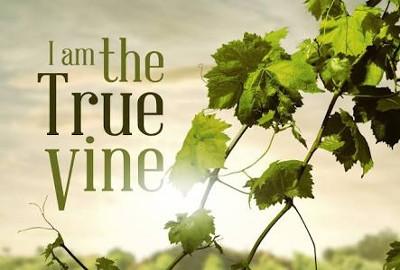 New vine in New bottles